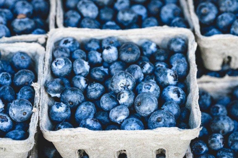 blueberry-1326154_1920